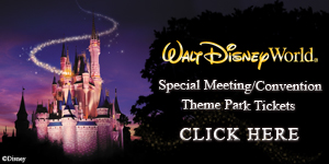 Walt Disney World Theme Park Tickets